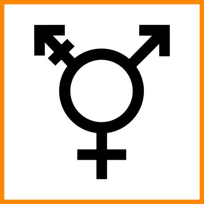 Queerpolitik